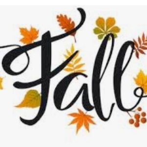 🍁 FALL ITEMS FOR SALE!